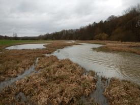 Aisne pleins-bords s'est connectée à la zone humide