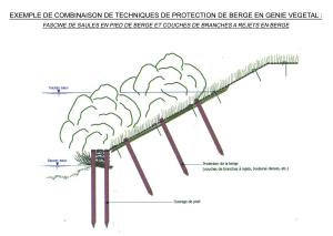 Exemple de combinaison de techniques de protection de berge en génie végétal