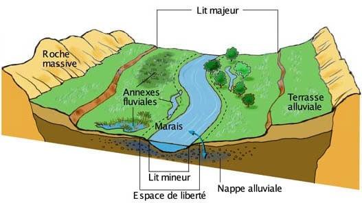 fonctionnement d'un cours d'eau, lit mineur et lit majeur