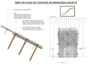 Mise en place de couches de branches a rejets