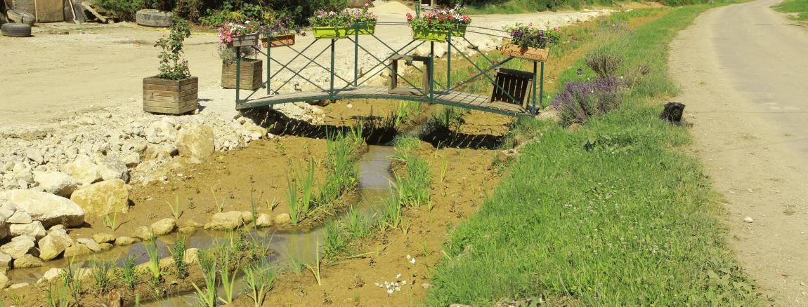 Restauration hydromorphologique de l'Aisne et ses affluents en Meuse