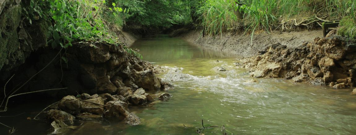 Rétablissement de la continuité écologique de l'Aisne en Meuse